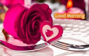 Gud/Good Morning Pic Images Wallpaper Download