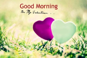 Gud/Good Morning Pic Images HD Download
