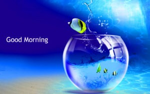 Latest HD Gud/Good Morning Pic Images Photo Free Download