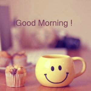 Best Free Gud/Good Morning Pic Images Wallpaper Photo Download