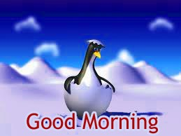 Gud/Good Morning Pic Images Photo Free Download