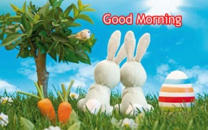 Gud/Good Morning Pic Images Pics Free Download