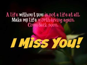 I miss You Images Pictures Photo Pics hd Wallpaper HD Download for Whatsaap With Red Rose