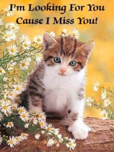 I Miss You Pics Download