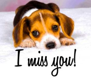 i miss you photo Images Wallpaper Pics download