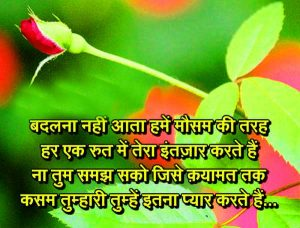Hindi Love Shayari Images Photo Download for Whatsaap