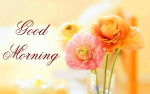 gd mrng images picture Photo Pics Wallpaper HD free download With Flower
