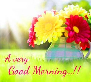 311 love good morning images wallpaper free download tab bytes india