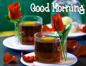 Love Flower Good Morning Images Photo Pics HD Download