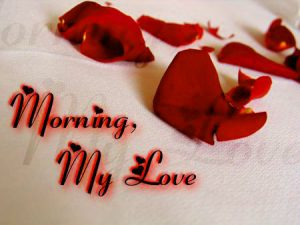 Love Good Morning Images Photo Pics Flower For Whatsaap