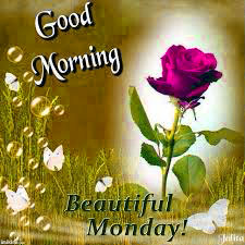 Good Morning Wallpaper Images Photo Download