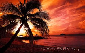 Free good Evening Images Pics Download