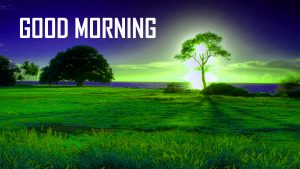 New HD Good Morning Photo Download
