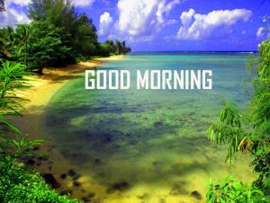Nature HD Good Morning Photo Pics Download