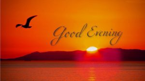 Free Good Evening Photo Pics Download