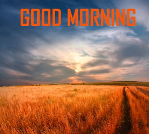 Free Good Morning Wallpaper Download
