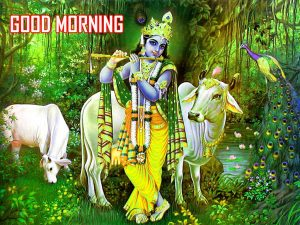Sri Krishan Good Morning Images Downlaod