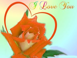 I love you photo wallpaper free download