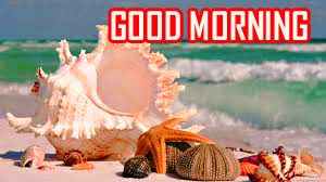 Free Nature Good Morning Photo Download