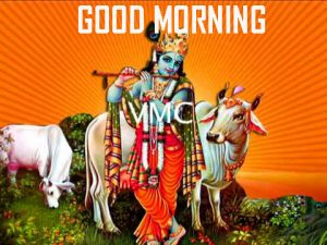 God Krishna Good Morning Pics Free Download