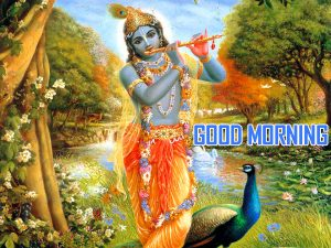 HD God Krishan Good Morning Photo Pics Free Download