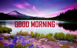Nature Good Morning Wallpaper Download