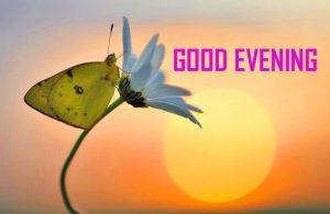 hd good Evening pics photo downlaod