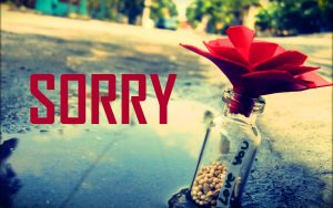 Sorry Images With Flower