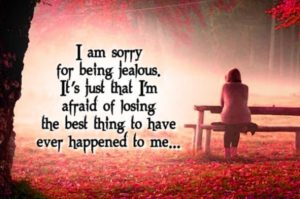 Sorry Images Photo Wallpaper Free Download