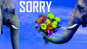 Sorry Photo Images Pics Download