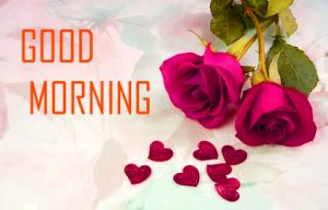 Flower Good Morning Photo With Red Rose