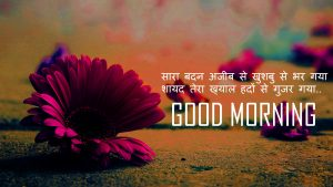 Flower Good Morning Pictures For Whatsaap In Hindi Quotes