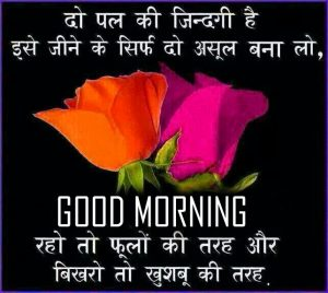 Flower Good Morning Pictures With Hindi Quotes