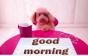 Good Morning Monday Images Photo Pics Free Download