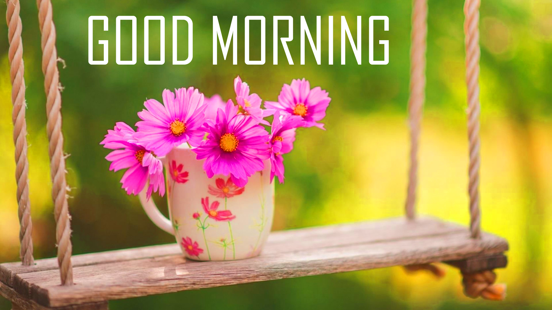 246 Good Morning Images Photo Pictures With Flowers Hd Download Good Morning Images Good Morning Photo Hd Downlaod Good Morning Pics Wallpaper Hd