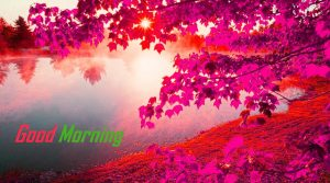Good Morning 3D Photos Pics For Whatsaap