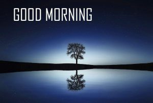 Amazing New Nature Good Morning Images Photo HD Download