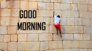 Best New Amazing Good Morning Pictures Free Download