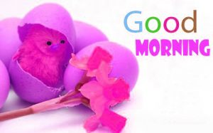Good Morning 3D Photos Pic Wallpaper Images