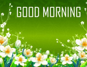 Flower Good Morning Photo Images Wallpaper