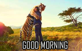 Best New Amazing Good Morning Images Download