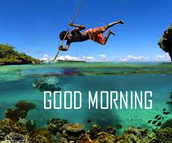 Best New Amazing Good Morning Images Photo Download