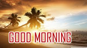 Best New Amazing Good Morning Pictures For Whatsaap