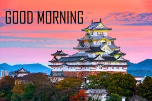 Best New Amazing Good Morning Pictures Download