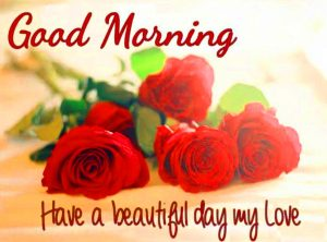 Her Good Morning Images With Red Rose