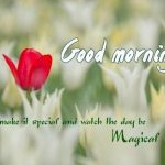 Gud Morning Pictures – 110+ Good Morning Images Photo Download