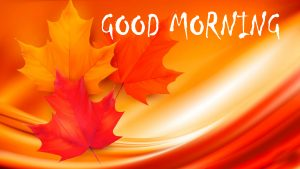 Good Morning Status Images Photo Download