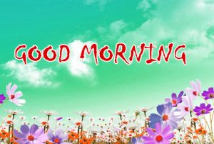 Good Morning Status Photo Pictures Download