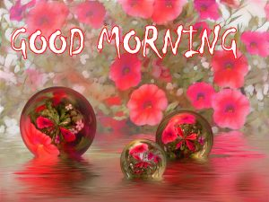 Good Morning Sites Images