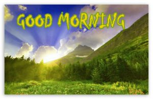 Good Morning Status Images Photo Pictures Download